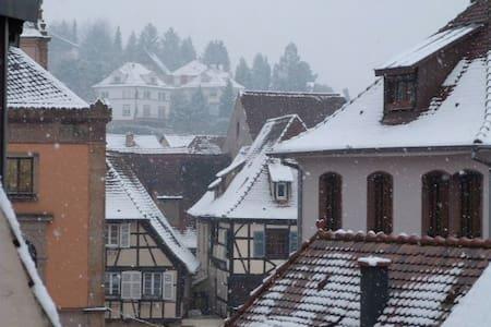 Les Toits d'Obernai - Obernai - Apartment