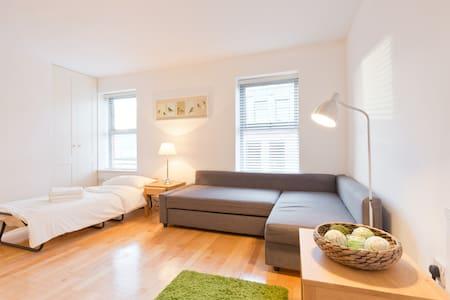A Cozy Studio, sofa bed & guest bed