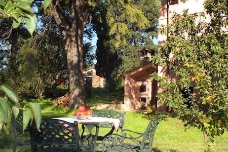 Podere La Concia in Maremma - Giuncarico - Bed & Breakfast