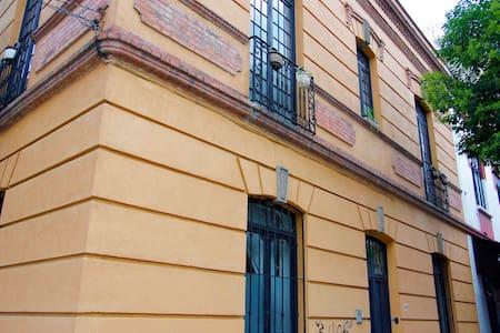 Spacious room in beautiful Mexico City B&B - Haus