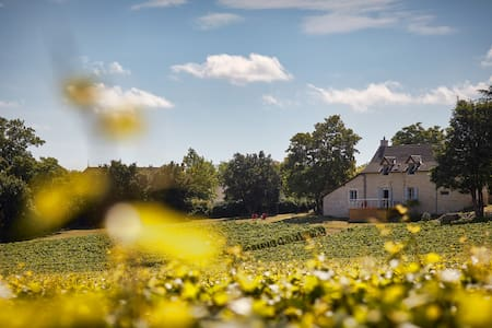 Your House in the Heart of the Vineyards - Haus