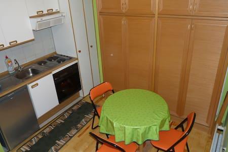 Estudio en canfranc estacion - Apartmen