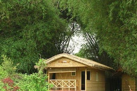 Bamboo Groove Experience @ Periyar Tiger reserve - Kumily - Skjul