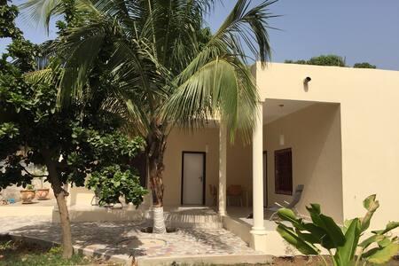 Palm Lodge - Apartamento