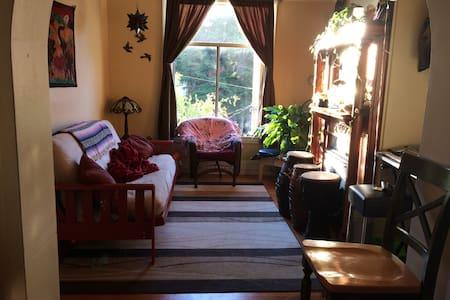 Room available between Nopa and Haight/Ashbury!!! - San Francisco - Apartment