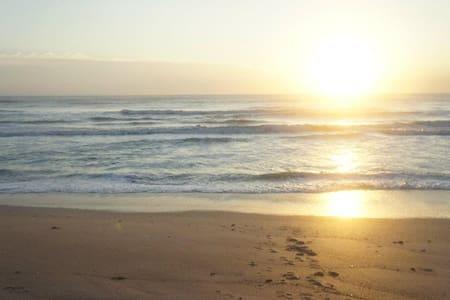Oceanfront paradise condo - New Smyrna Beach