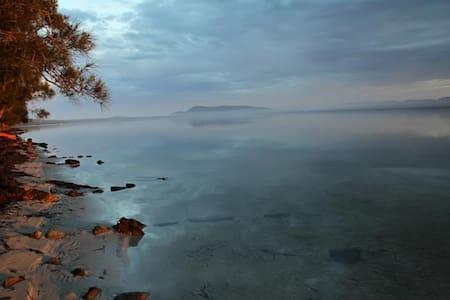 Edgewater - Green Point - Hus