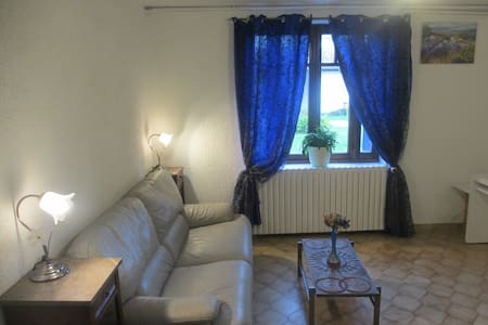 a huge and quiet flat in the countryside - SAINT RAMBERT D ALBON
