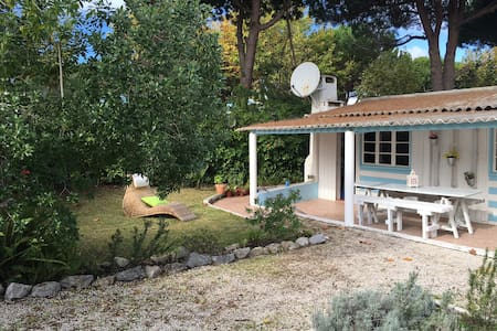 Cozy Meco Cottage is in one of the most charming Portuguese village, Aldeia do Meco. This cozy 2 bedroom cottage is surrounded by pine trees, only  15 minutes walking distance from the beach and has a large private and relaxing garden.