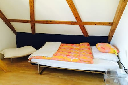 Charming attic room with Lakeview - Appartement