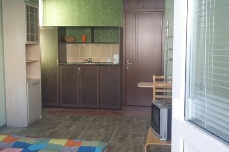 уютная квартира в центре Гудаури - Huoneisto