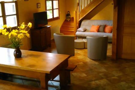 Maison individuelle avec extérieurs - House