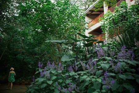 Honeywood Forest Lodge - Chalet