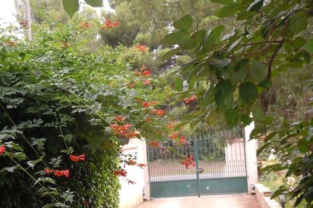 Maison vacances avec grand jardin - Casa