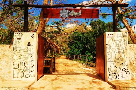Xkopek Camp, Bee Park - Valladolid  - Tent
