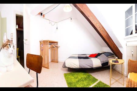 Chambre confortable à quelques pas du centre ville - Strasbourg - Appartement