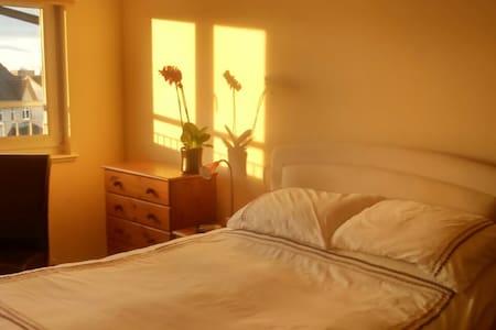 Modern comfortable master bedroom - Cambuslang