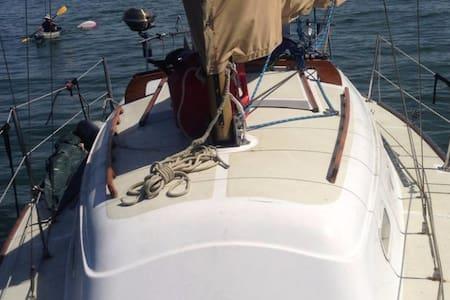 28' Sailboat in Harbor - Sausalito - Båd