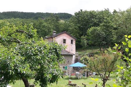 Mulino del frate, az. agricola, ospitalità rurale - Roncobilaccio - Rumah