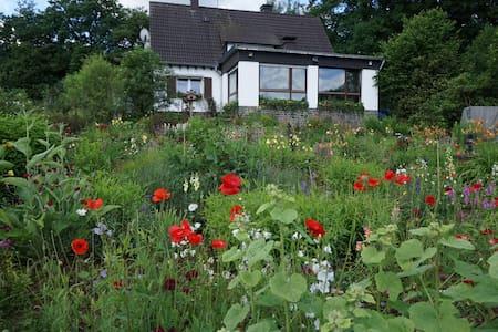 hübsche 45 qm Wohnung in reizvoller Umgebung - Kreuztal - Flat