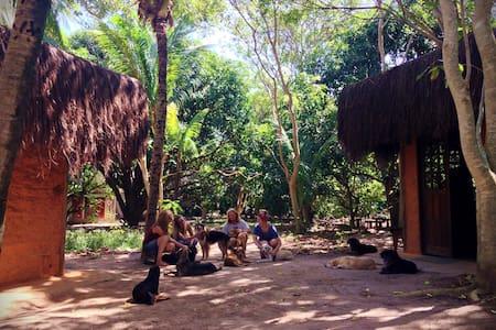 Nature Retreat Bela Natureza with doggies- Lodge 2 - Hut