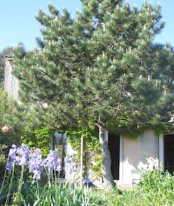 Grande chambre privee dans maison avec jardin - Bed & Breakfast