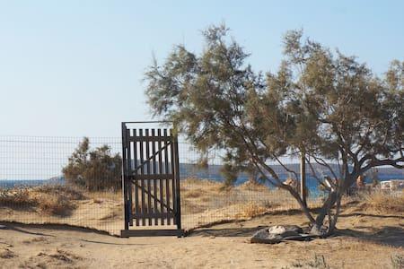 Studios on the beach - Chrisi Akti
