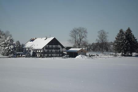 Ferienwohnung mit Bergblick in Traumlage - Wildsteig