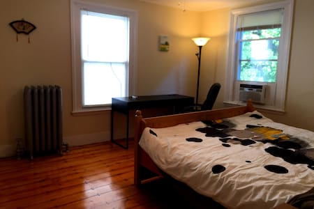 Cozy / Spcious room in Brookline Village - Hus