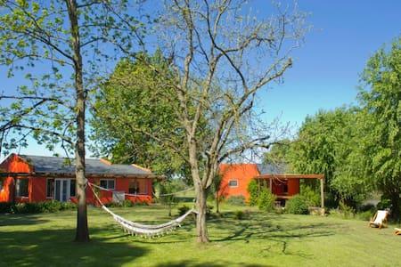 The Encounter Cabin - Paraná Delta - Pulau