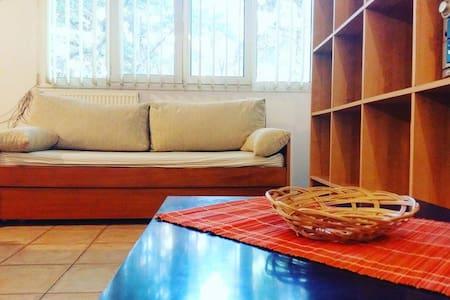 Quiet studio with garden access - Vólos - Lägenhet