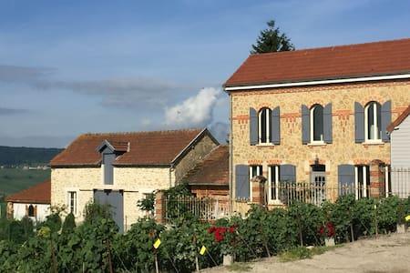 Maison Le Figuier dans village viticole - House