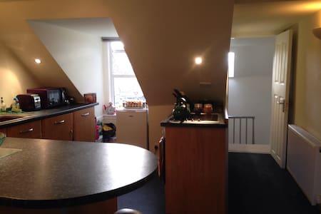 Very central cosy, open plan flat - Loft