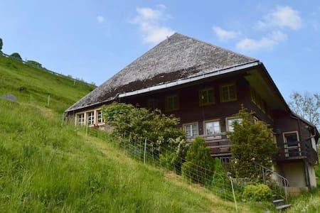 """ STÜBENBÄCHLEHOF"" - Todtnau - Condominio"