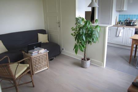 Appartement de charme avec vue sur la Mayenne - Leilighet