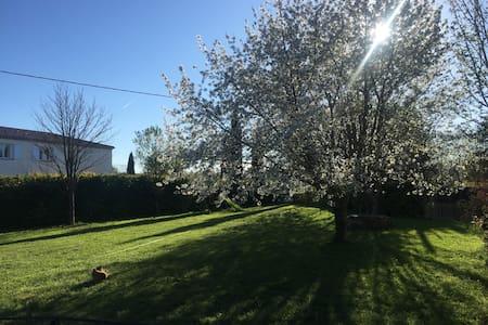 Mas Cougourdan - Aix-en-Provence - Villa