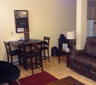 Apartment in Central West End/Midtown - St. Louis - Lägenhet