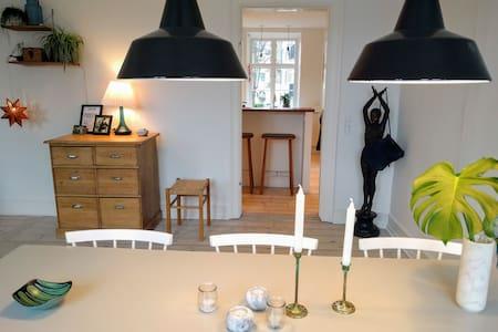 A Room in a large Appartement at Skt. Hans Torv - Copenhague - Appartement