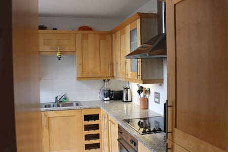 Stunning Spacious Studio Flat in Central London - London - Apartment