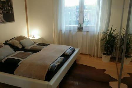 Gemütliche Wohnung mit Holzofen - Apartment