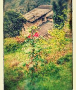 Ecovillage Fondale Corsica, chambre partagée - Tallone - Earth House