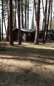 Rustic cabin - Baker City - Stuga