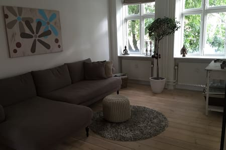 Nice apartment in central Copenhagen - Frederiksberg - Apartment