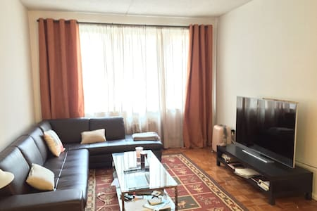 Large, sunny 1 bedroom apartment.