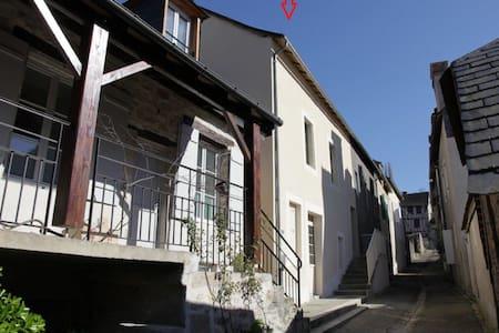 TERRASSON LA VILLEDIEU - Terrasson-Lavilledieu