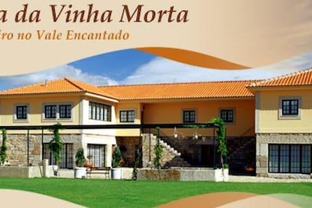Quinta no vale encantado ( Douro) - Villa