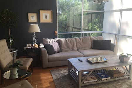 Chic & Cozy Boutique Apartment - Ciudad de México - Apartament