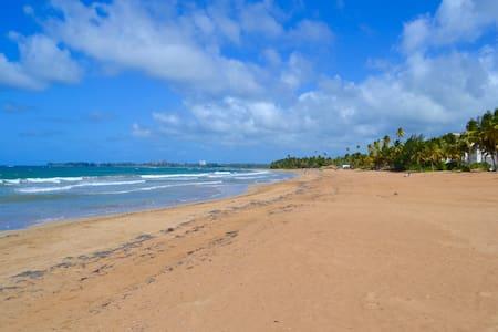 Beachfront! Ocean Views | Sleeps 6 - Lakás