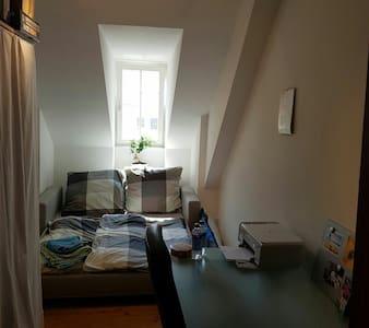 Doppelzimmer im Zentrum von Konstanz - Konstanz - Appartamento