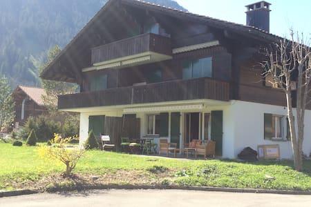 appartement dans résidence montagne. Swiss Alps ! - Lenk im Simmental - Wohnung